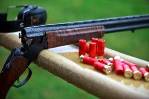 Как выбрать охотничье ружье для новичка